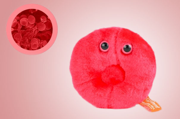 14095575816743 Plush Microbes Blood Cell Giant Plush Microbes and Cells