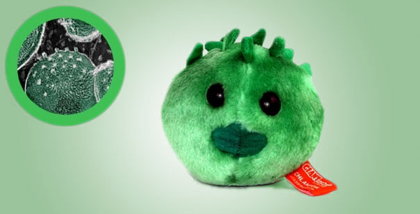 14095575855116 Plush Microbes Chlamydia Giant Plush Microbes and Cells