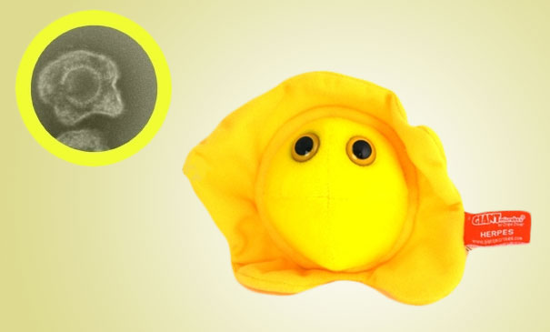 14095575856453 Plush Microbes Herpes Giant Plush Microbes and Cells