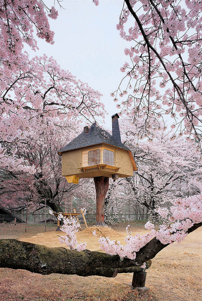 140955796013 japanese treehouse 03 Theres A Treehouse In Japan Thats Straight Out Of A Fairy Tale. I Would Totally Live In This Thing.