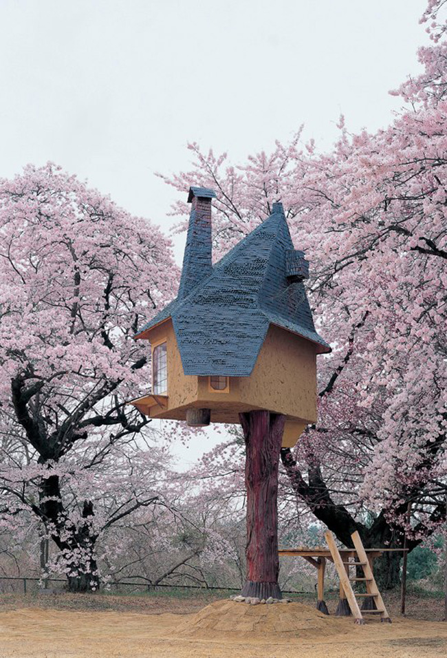 14095579604942 japanese treehouse 02 Theres A Treehouse In Japan Thats Straight Out Of A Fairy Tale. I Would Totally Live In This Thing.