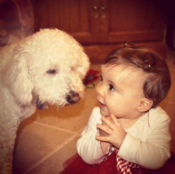 14095579616825 babies meeting dogs 07 Here Are 15 Pictures That Prove Its The Simplest Moments That Mean The Most. Heart = Exploded.
