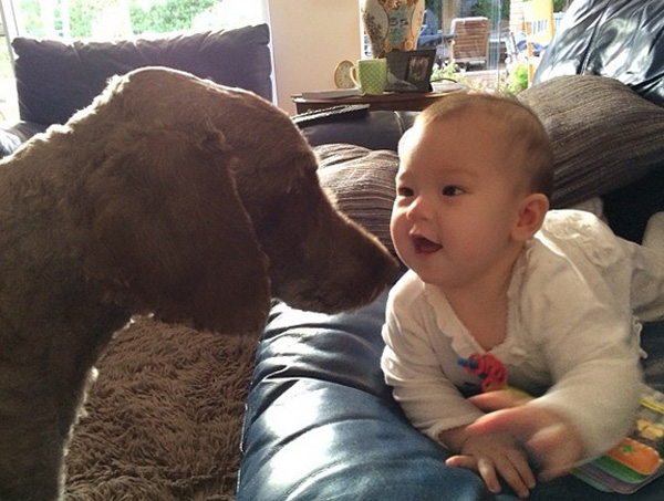 14095579624732 babies meeting dogs 10 Here Are 15 Pictures That Prove Its The Simplest Moments That Mean The Most. Heart = Exploded.
