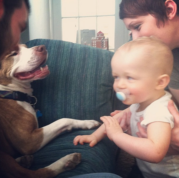 14095579633925 babies meeting dogs 13 Here Are 15 Pictures That Prove Its The Simplest Moments That Mean The Most. Heart = Exploded.