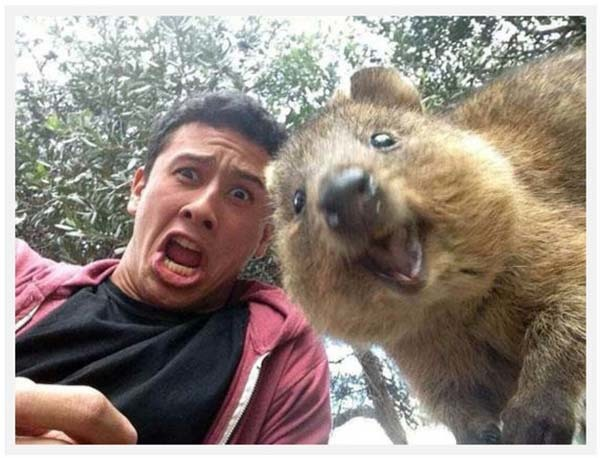 14095617223582 desktop 1406690832 The Best...est Timed SELFIES!! Number 11 is unbelievable!!