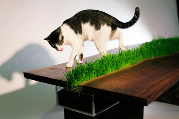 14095617392353 furniture design for pet lovers 3 2 Fantastic Furniture Ideas For Pets and Pet Owners. #18 is Simply Superb!!