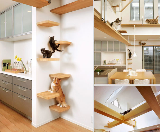 1409561754657 furniture design for pet lovers 17 Fantastic Furniture Ideas For Pets and Pet Owners. #18 is Simply Superb!!