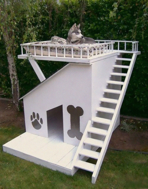 14095617558896 furniture design for pet lovers 14 Fantastic Furniture Ideas For Pets and Pet Owners. #18 is Simply Superb!!